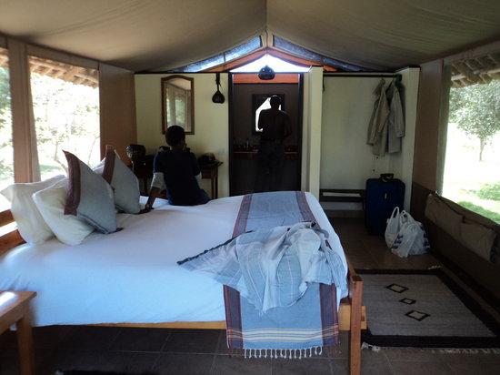 Voyager Ziwani, Tsavo West: Tent