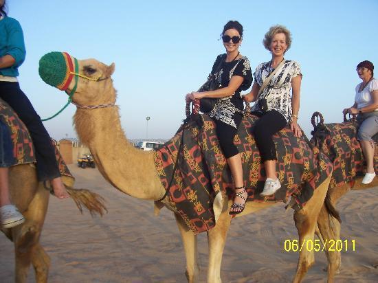Ibis Deira City Centre: The Desert safari is a must!