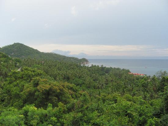 Ban's Diving Resort: View