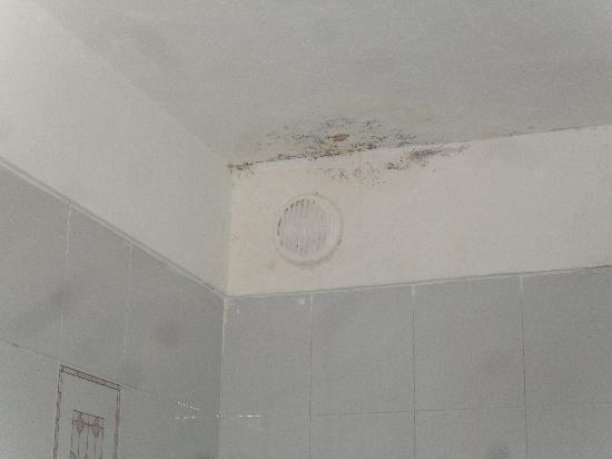 Laguna Park 2: mold on ceiling