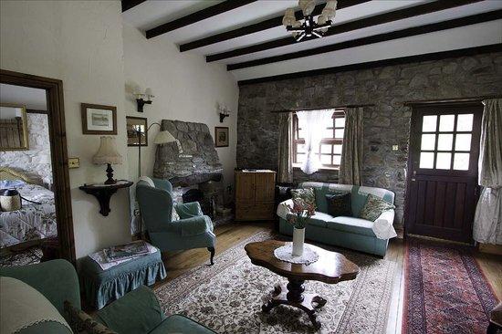 Blaen Cedi Farm: The Lounge