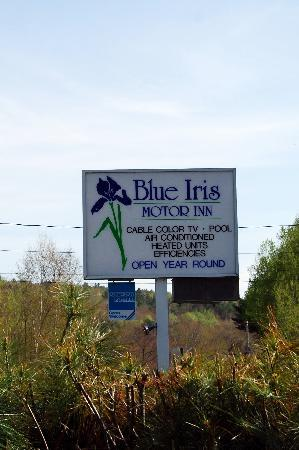 Blue Iris Motor Inn: The sign