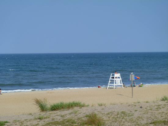 Sanctuary Realty at False Cape : Relax on this pristine beach.