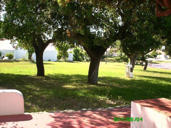 Vilanova Resort : View from villa patio