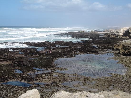 De Hoop Nature Reserve: Oceano