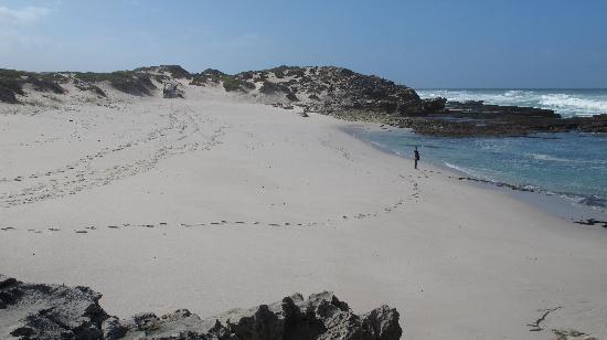 De Hoop Nature Reserve: Spiaggia