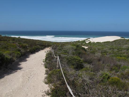 De Hoop Nature Reserve: Trail