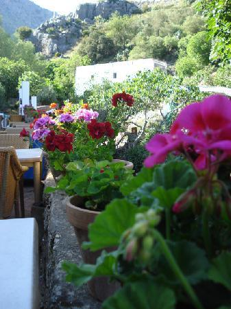 Restaurant Molino del Santo : Colourful restaurant terrace