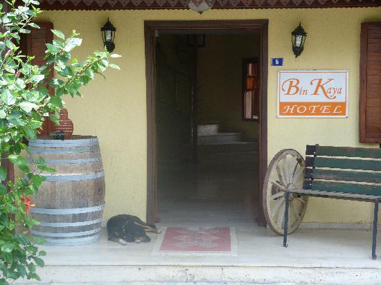 Bin Kaya Hotel: Entrance