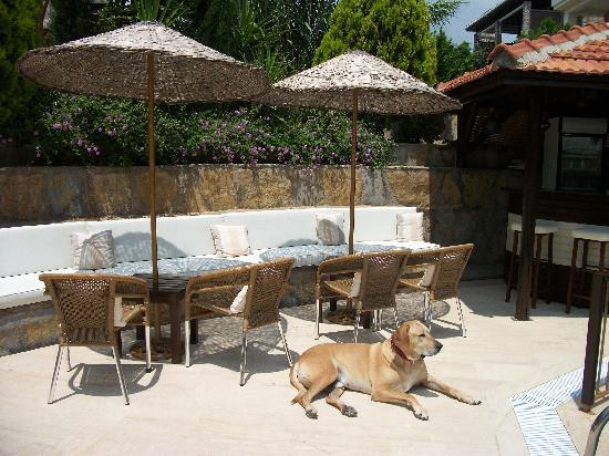 Aegean Gate Hotel: Lord Sampson,Esq, by the pool