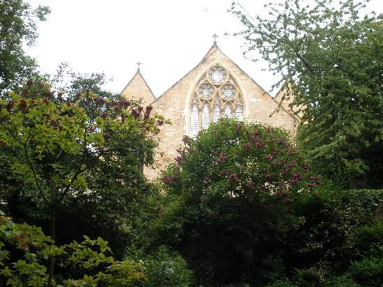 The Flower House: View from the back garden
