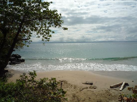 Hotel Las Ballenas Escondidas: la plage de l'hotel