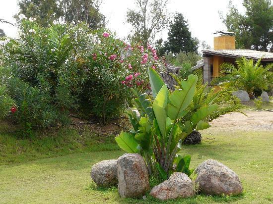 Agriturismo Le Margherite: giardino