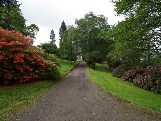 Letterfinlay Lodge Hotel : Lodge grounds