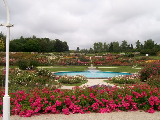 Caen, Prancis: View over the roses