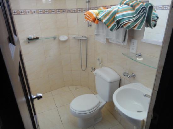 Central Boutique Inn : Bathroom