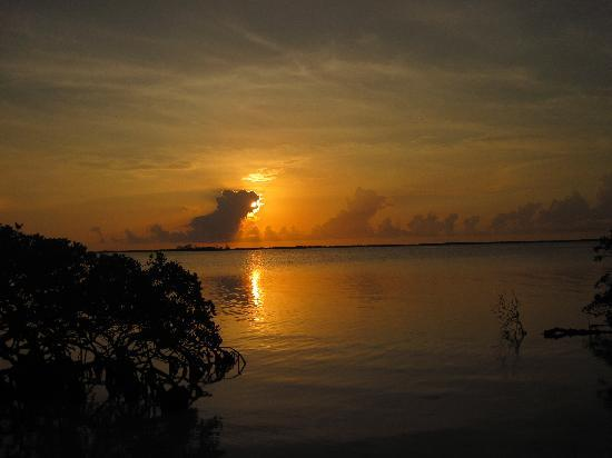 Coco Plum Island Resort: Sunrise at Cocoplum Cay