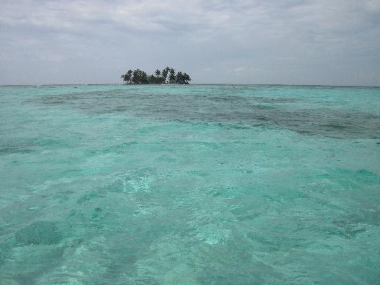 写真Coco Plum Island Resort枚