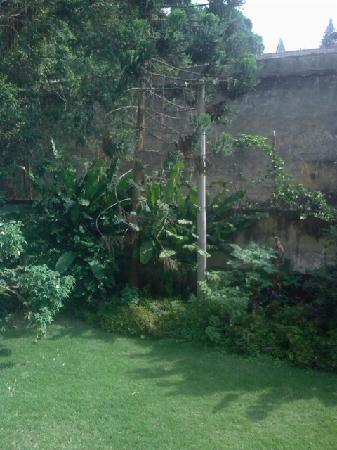 Villa Laurinda: The view from our bedroom