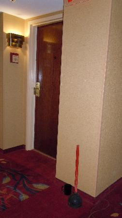 Embassy Suites by Hilton Hotel & Montgomery Conference Center: the dreaded plunger