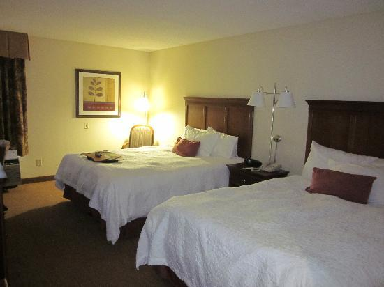 Hampton Inn Raleigh Midtown : room