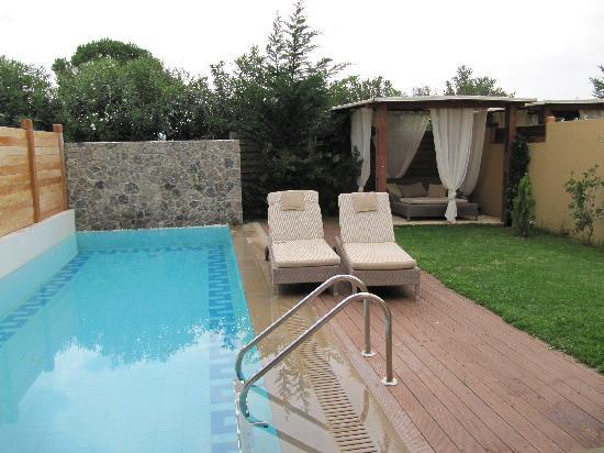 Restia suite 39 s immaculate garden picture of restia for Garden plunge pool uk