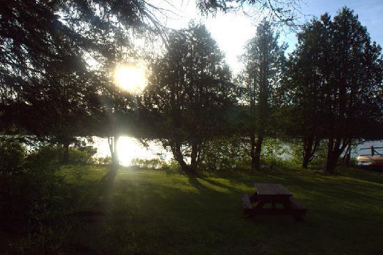Woodland Echoes Resort: Paradise
