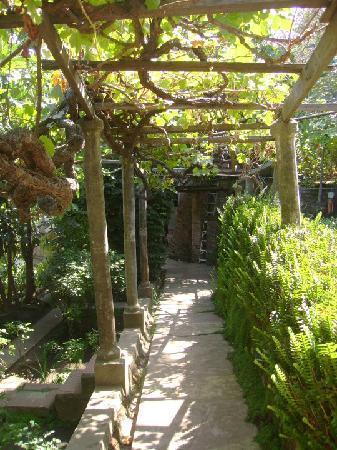 Puerto Natura : parte del jardín