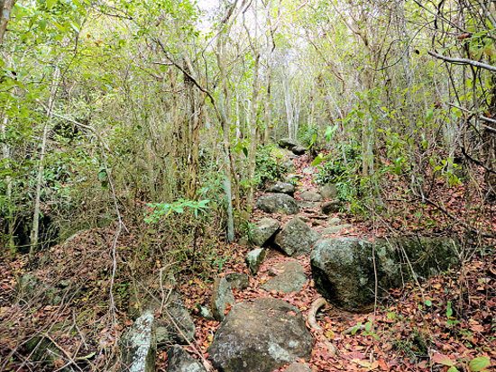 Virgin Gorda Peak: Rocky 800 meter path. From the stair entrance
