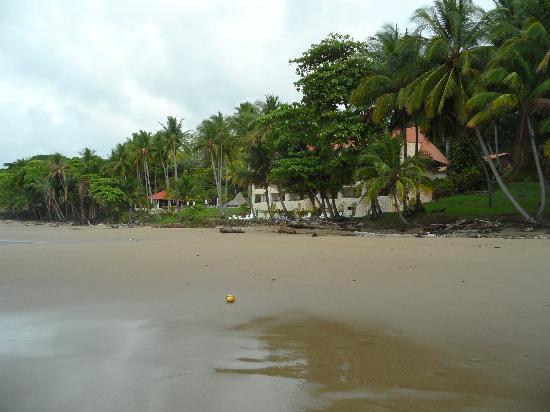 Tango Mar Beachfront Boutique Hotel & Villas: A view from the beach.