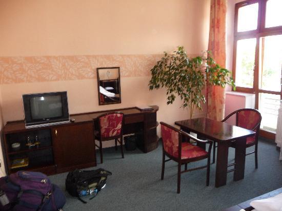 Zlata Hvezda Hotel Litomysl: room