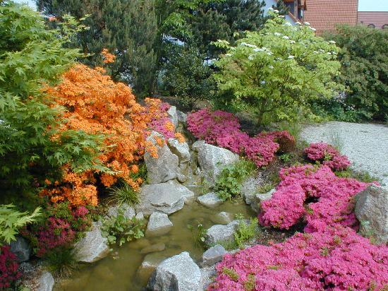 Schindlerhof Hotel: Japanischer Garten