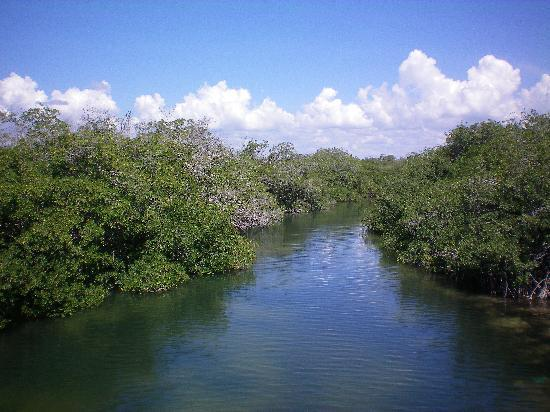 GrandSlam Fly Fishing Lodge: Beautiful Mangrove Lagoon