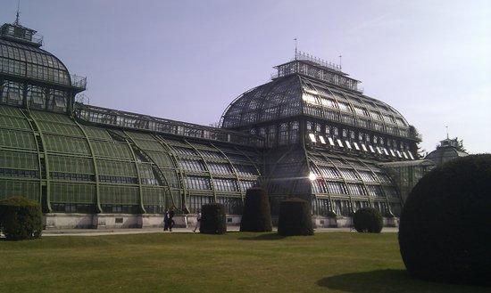 Palmenhaus Schoenbrunn