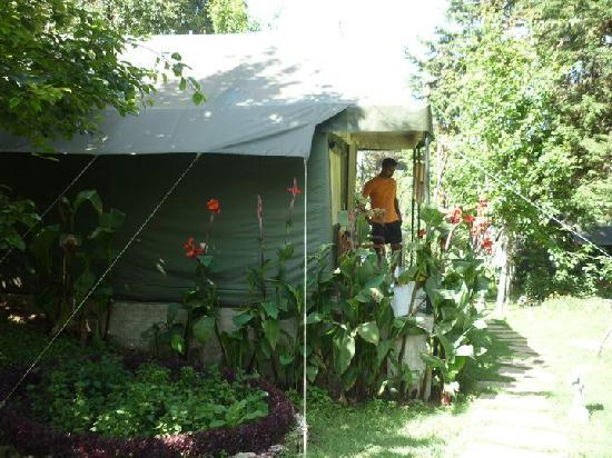 The Fern Creek : the luxury tent :)