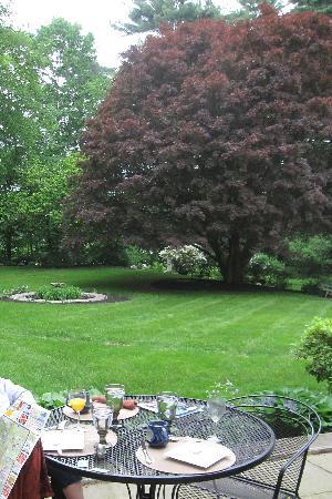 Forty Putney Road Bed and Breakfast: the backyard where we had breakfast