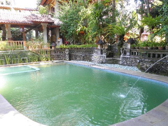 Ketut's Place: la piscine