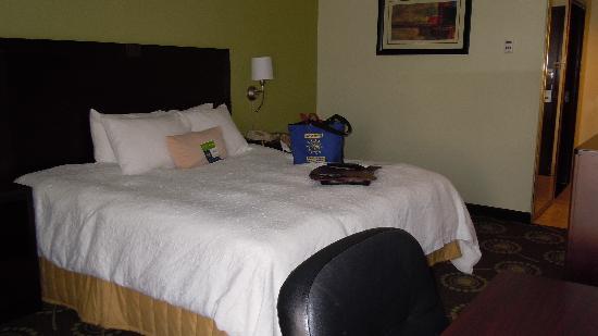 Hampton Inn Sulphur / Lake Charles Area : King Bed