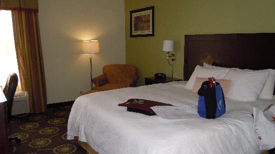 Hampton Inn Sulphur / Lake Charles Area : relaxing easy chair!