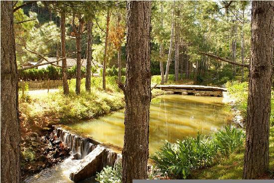 São Luís do Paraitinga, SP: Gardens