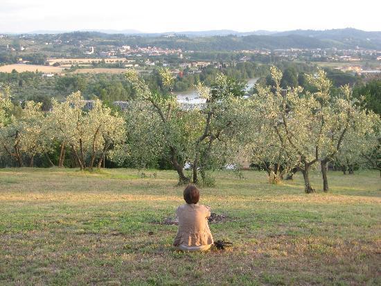 A Casa di Olivo: Garden with a view