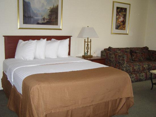 Best Western Plus Cedar Inn & Suites: first room