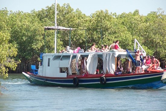 Banjul, Gambia: Lazy Day amidst the mangroves