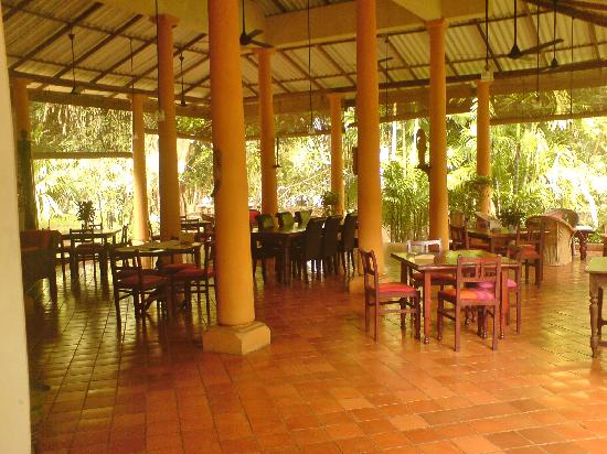 Ging Oya Lodge: The beautiful open dining room, leading onto the pool area.