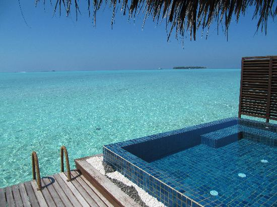 Taj Exotica Resort & Spa: Private plunge pool