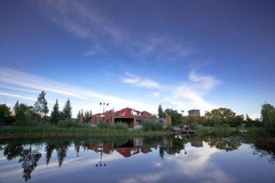 Grande Prairie Dog Park