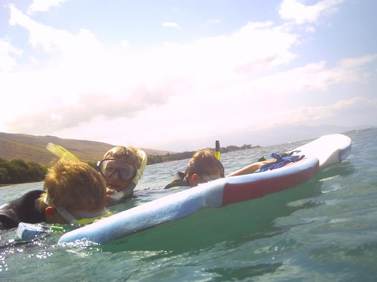 The Ocean Project On Maui: Mel with our kids, showing them sea life as they snorkled toward the turtles.