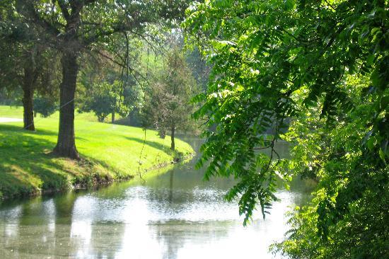 Inn on Crescent Lake: Peaceful!