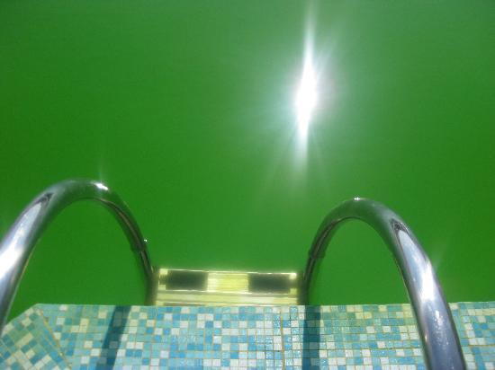 Villa Zina Pool - Picture of Villa Zina Park Hotel, Custonaci