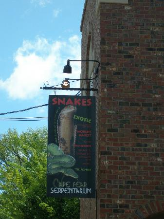 Suburban Extended Stay of Wilmington : Downtown the Snake place